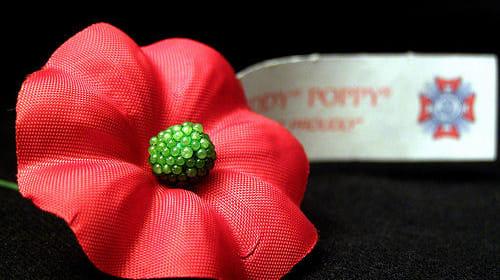 A Little Red Flower