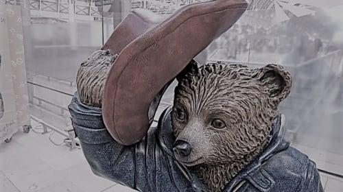 Newsflash: Bear in Red Hat Jailed in Marmalade Trafficking Scandal!