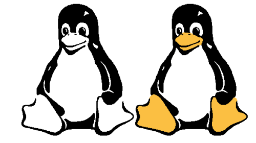 Linux in the World of Two Operating Systems
