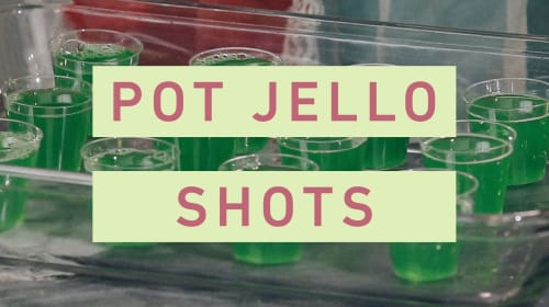 How To Make Jamaican Jell-O Shots