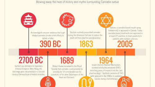A Brief History of Pot