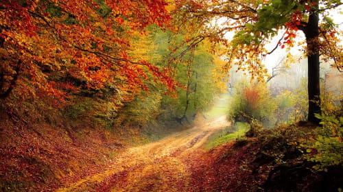Places to Go in Autumn
