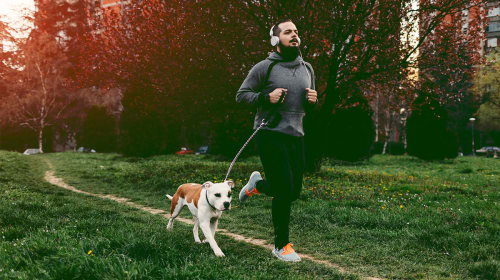 6 Awesome Benefits You and Your Dog Get When You Exercise Together
