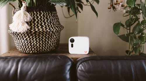 Keep Your Home Protected with the Ooma Butterfleye