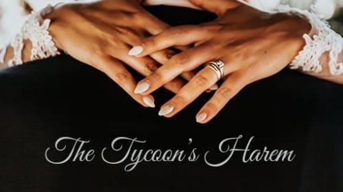 The Tycoon's Harem
