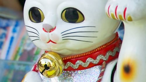 The Chinese Lucky Cat