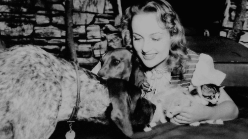 Carole Lombard and Her Protégées