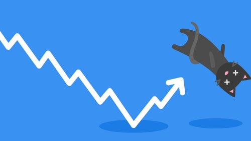 """What Is A """"Dead Cat Bounce""""?"""
