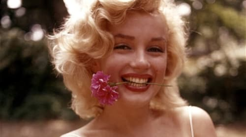 For the Love of Marilyn