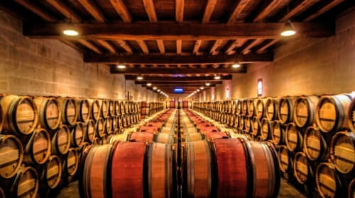 Making Wine and Working in a Cellar