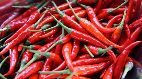 Why Spicy Foods Cause Runny Noses