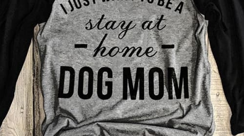 Being a Dog Mom Changed My Life