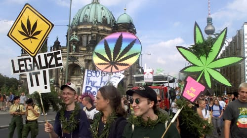 How To Stay Safe at a Pro-Cannabis Protest
