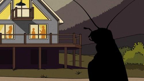 Adam Hopkins - Crickets
