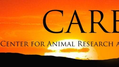 C.A.R.E. and BigCatDerek