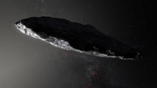 The Interstellar Visitor