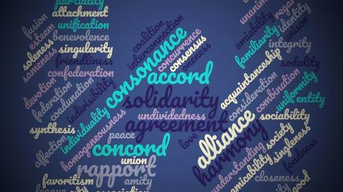 Defining Solidarity