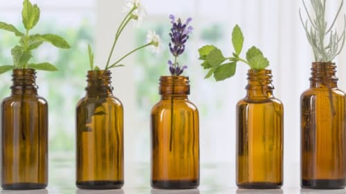 An Essential Guide to Essential Oils