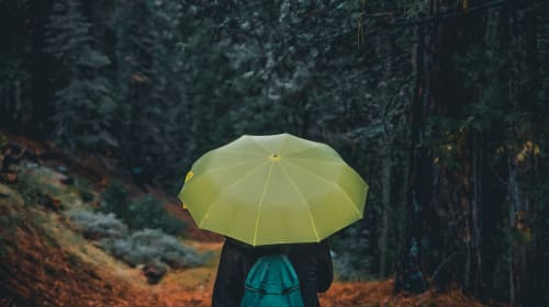 15 Songs About Rain