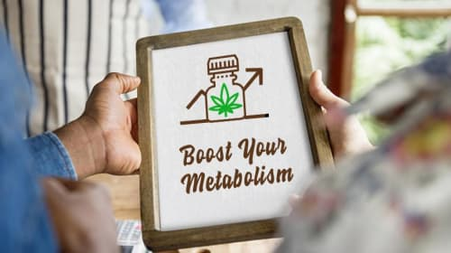How Can Taking CBD Oil Increase Your Metabolism