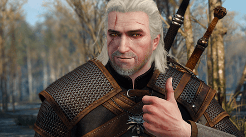 The Witcher 3: Wild Hunt. Tips for All Adventurers