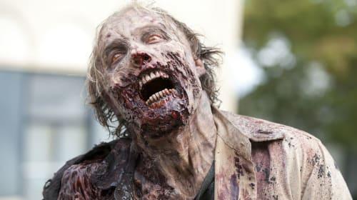 My Zombie Plan – Plan 2