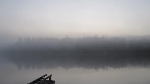 Fog Wall