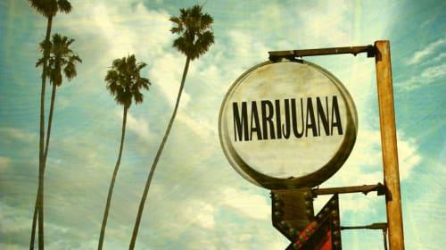 States That Legalized Marijuana