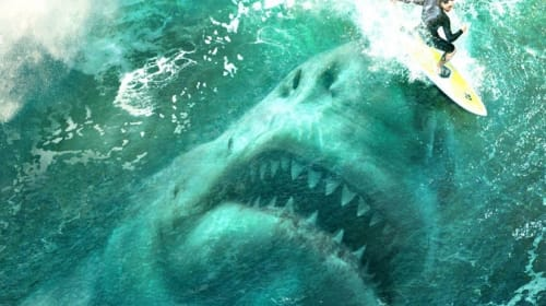 Two Films Proving Sharks Can Bring Out the Best in You