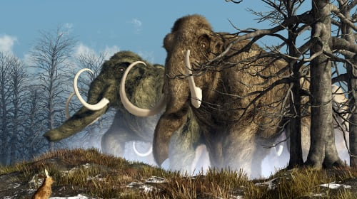 Megafauna You May Never Have Heard of That Went Extinct