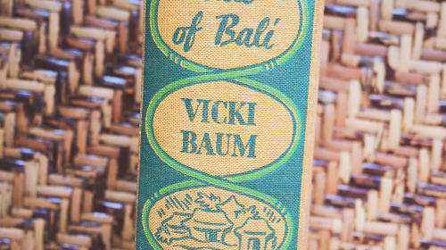 The Perfect Bali Travel Read
