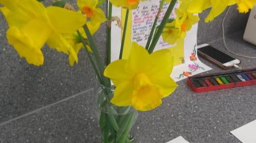 Scent of English Daffodil