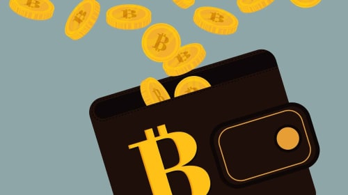 Why You Need a Bitcoin Wallet When You Travel