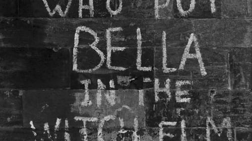 Who Put Bella in the Witch Elm?