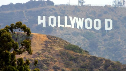 Jodie Foster Led Me to Hollywood