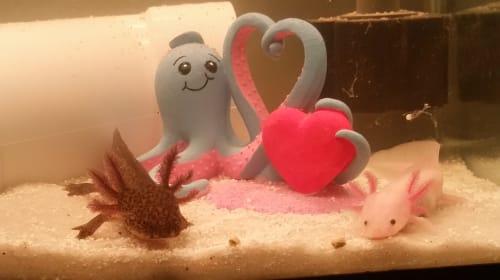 5 Reasons Why Axolotls Make Amazing Pets