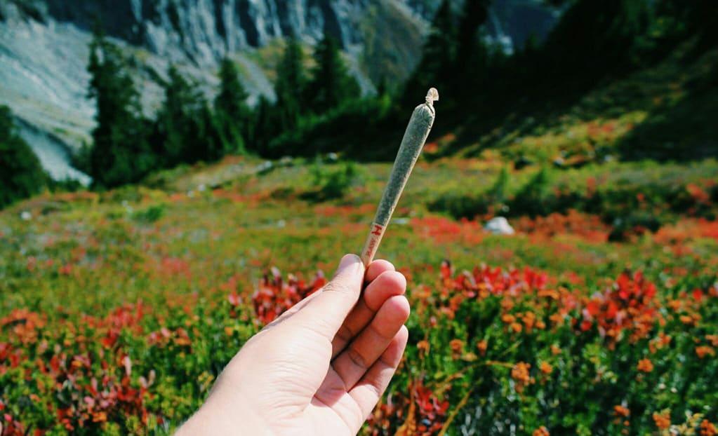 Healthiest Ways to Smoke Weed