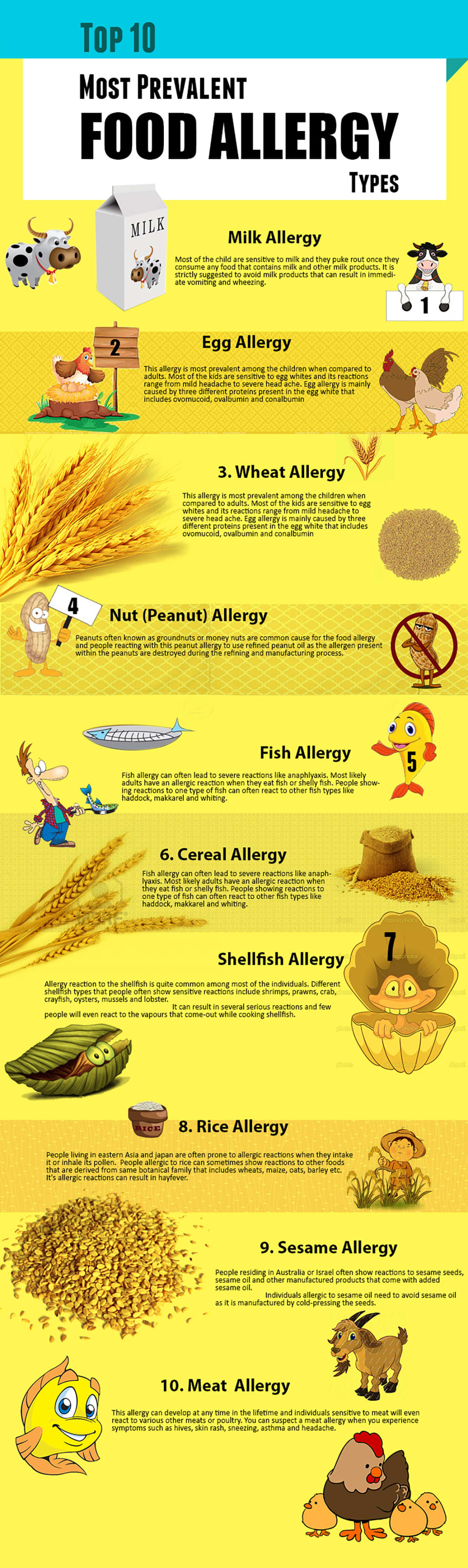 Wheat, Gluten, Dairy, Eggs and Nuts