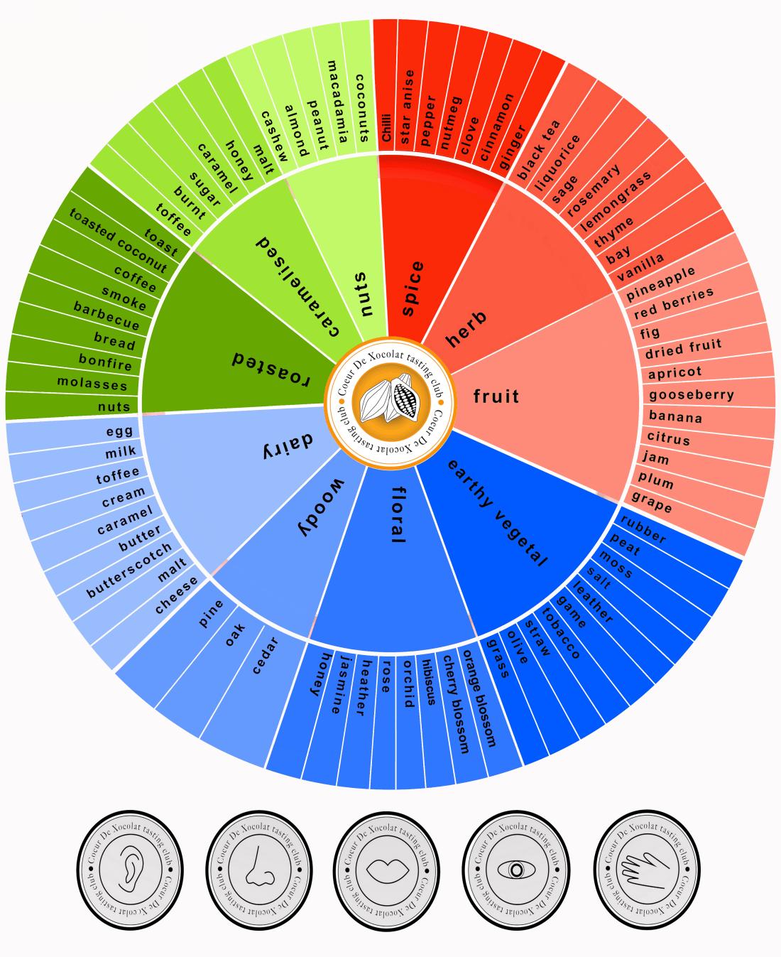 chocolate aroma wheel