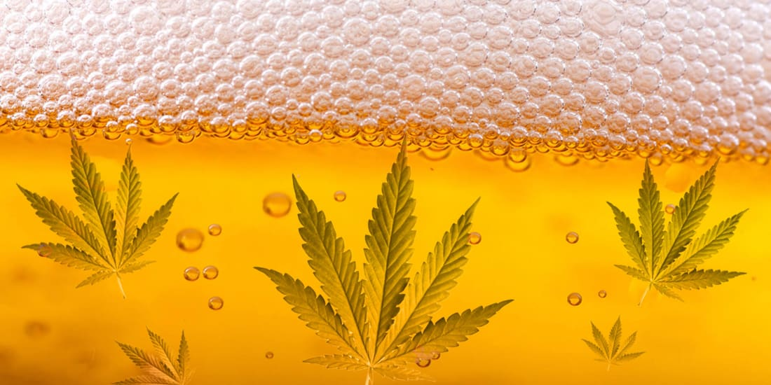 How to Make Weed Infused Beer