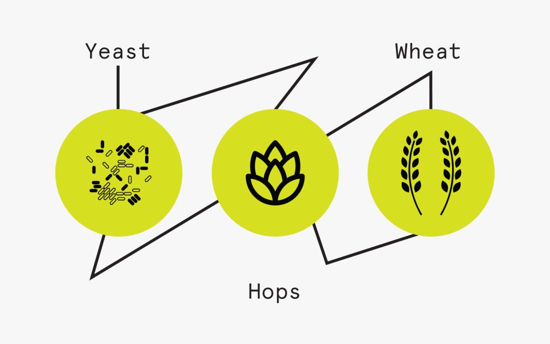 Elements of Beer