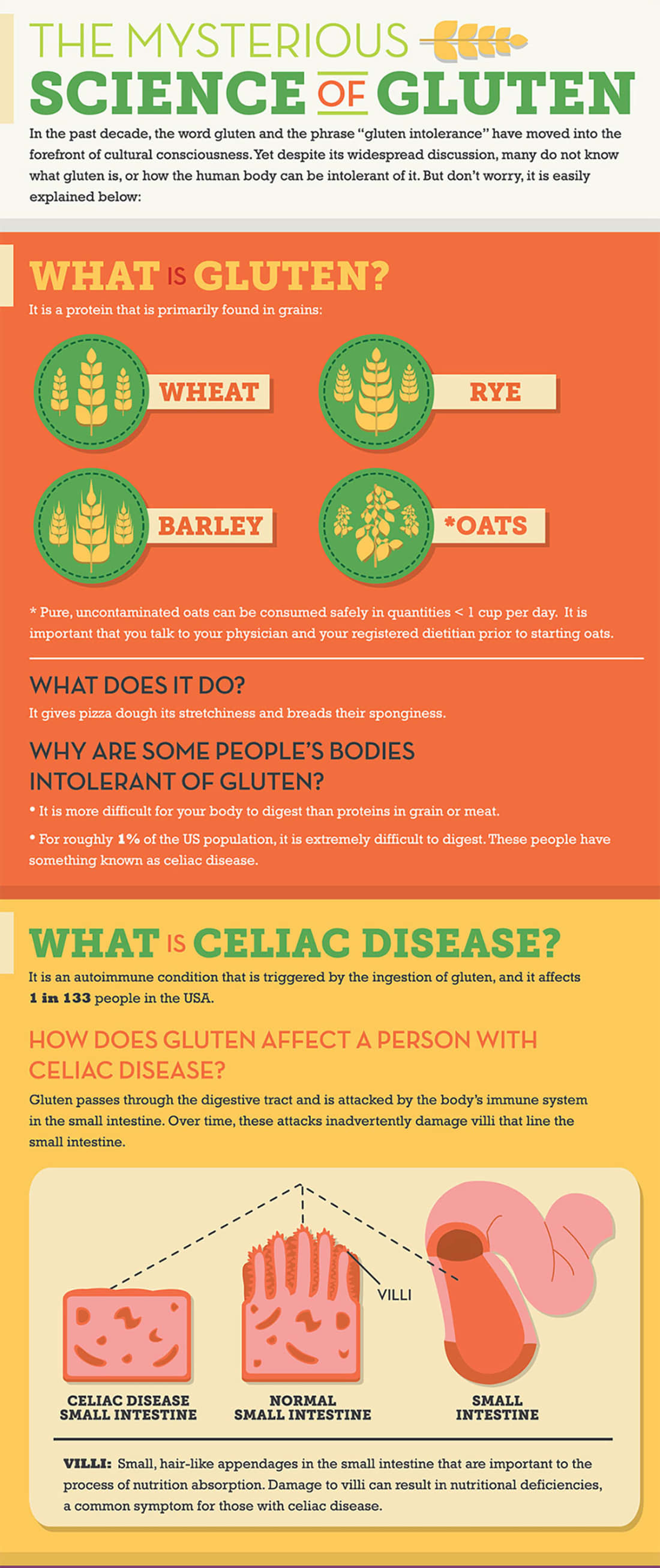 Gluten, Dairy and Eggs