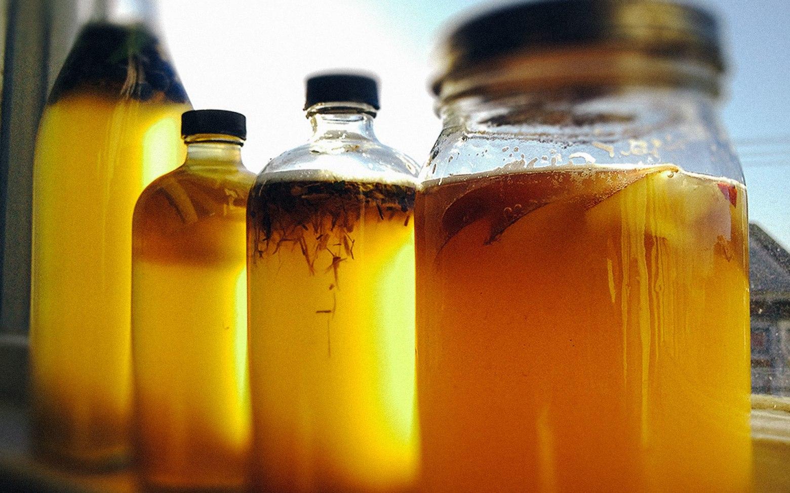 Probiotic Foods You Need in Your Diet