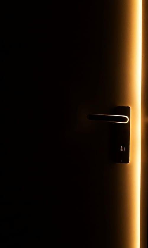 Seeing Through Doors