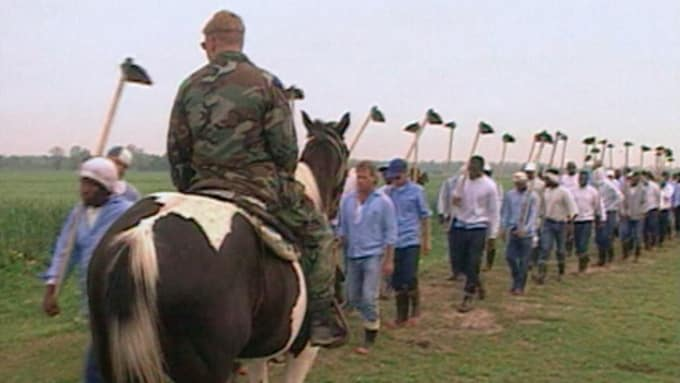 the farm life in angola prison