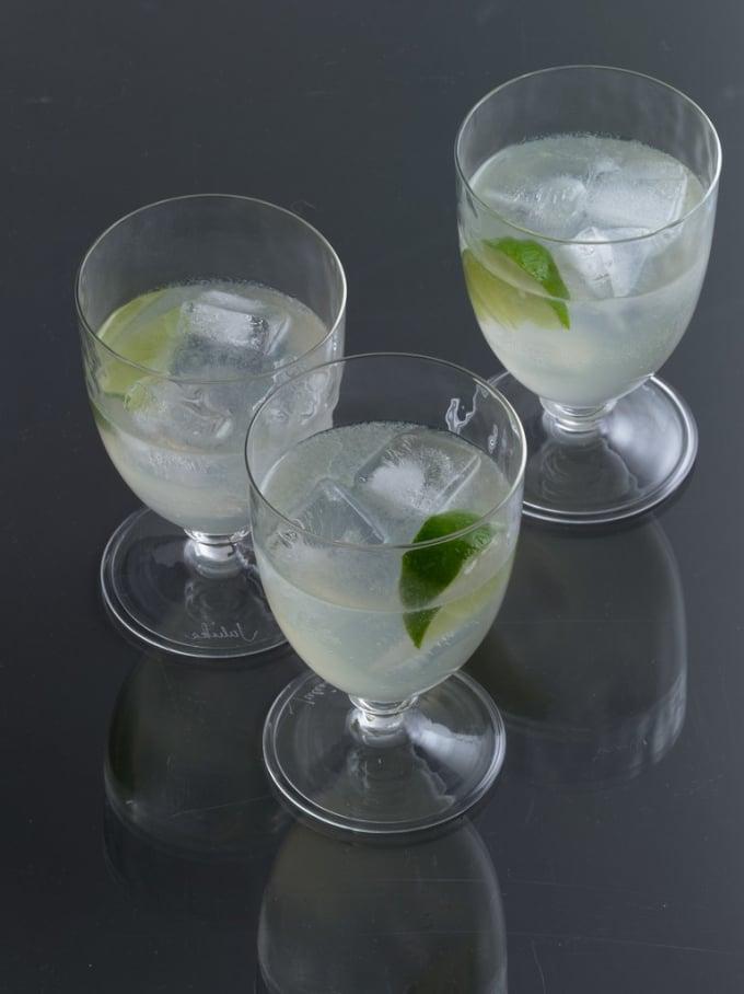 Vodka and Diet Soda