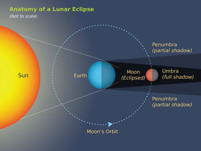 Diagram of Lunar Eclipse