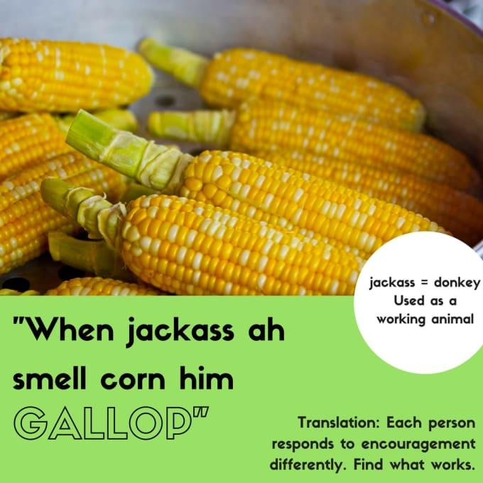"""""""When jackass smell corn him gallop."""""""
