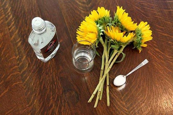 A Florist's Friend
