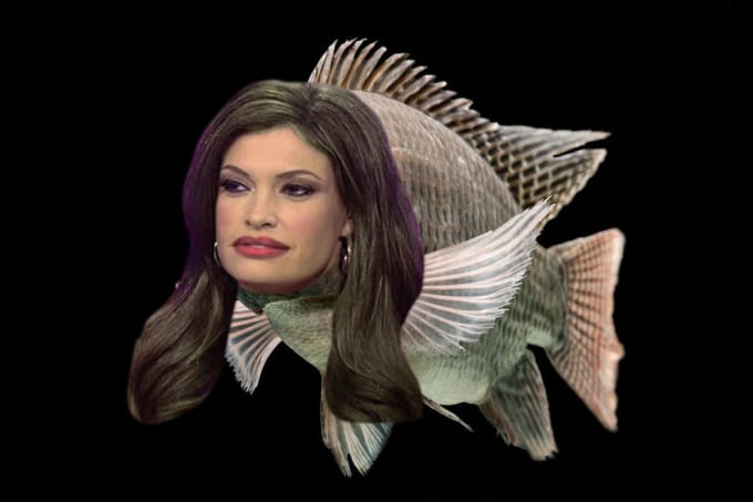 Here is a newswoman as a fish for some reason